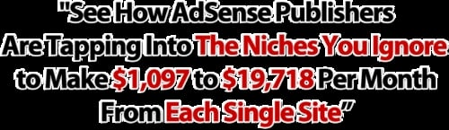 Product picture See How Adsense Publishers Make $1,097 to $19,718 Per Month From Each Single Site